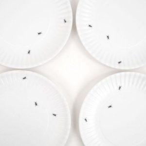 "180° Washable Paper/Melamine 9"" Dinner Plates Set/4"