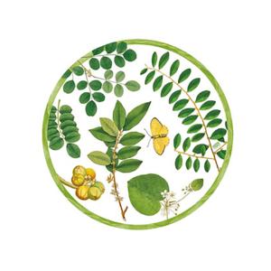 Caspari Coromandel Garden Die Cut Placemat
