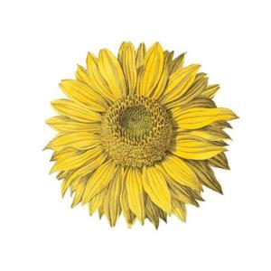 Caspari Coromandel Sunflower Die Cut Placemat