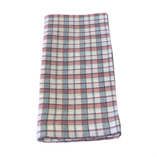 Tina Chen Designs Napkin Light Blue and Red Check
