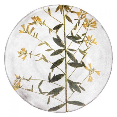 ASTIER DE VILLATTE-John Derian Genista Plate