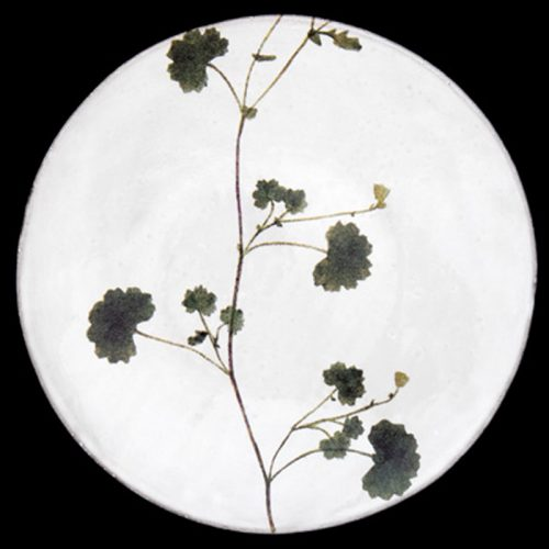ASTIER DE VILLATTE-John Derian Othona Plate
