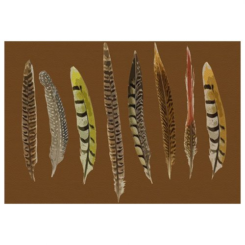 Pheasant Feathers Brown Rectangle Placemat - Set of 2