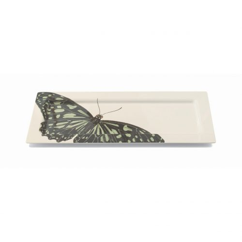 Thomas Paul - Metamorphosis Melamine EXLarge Rectangular Tray