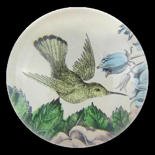 John Derian - Sepia Hummingbird Dome Paperweight