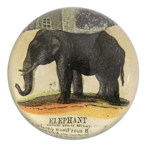 John Derian - Elephant Collage Dome Paperweight