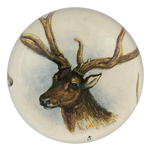 John Derian - 11 Tipped Deer Dome Paperweight